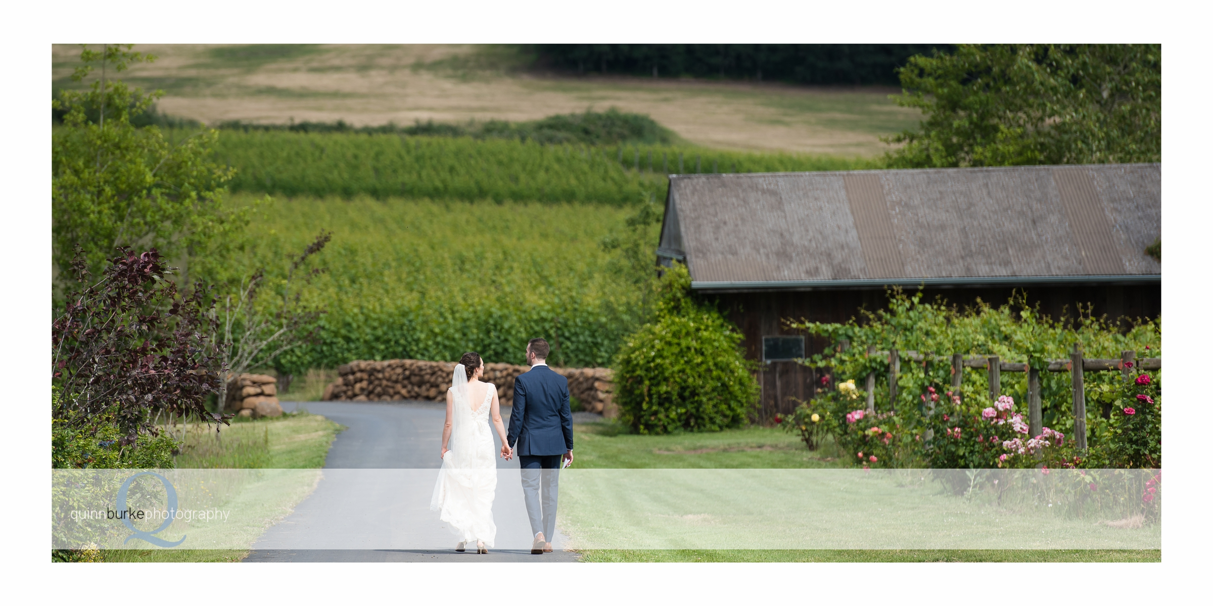 Bride and groom walking in vineyard