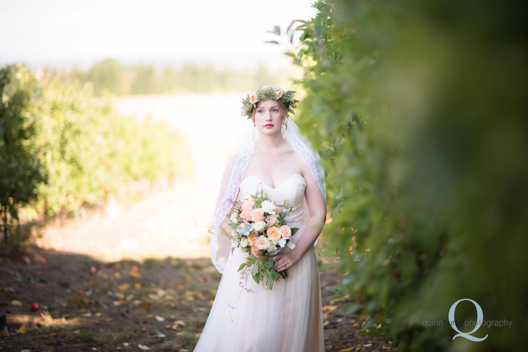bride in apple orchard oregon wedding Perryhill Farm