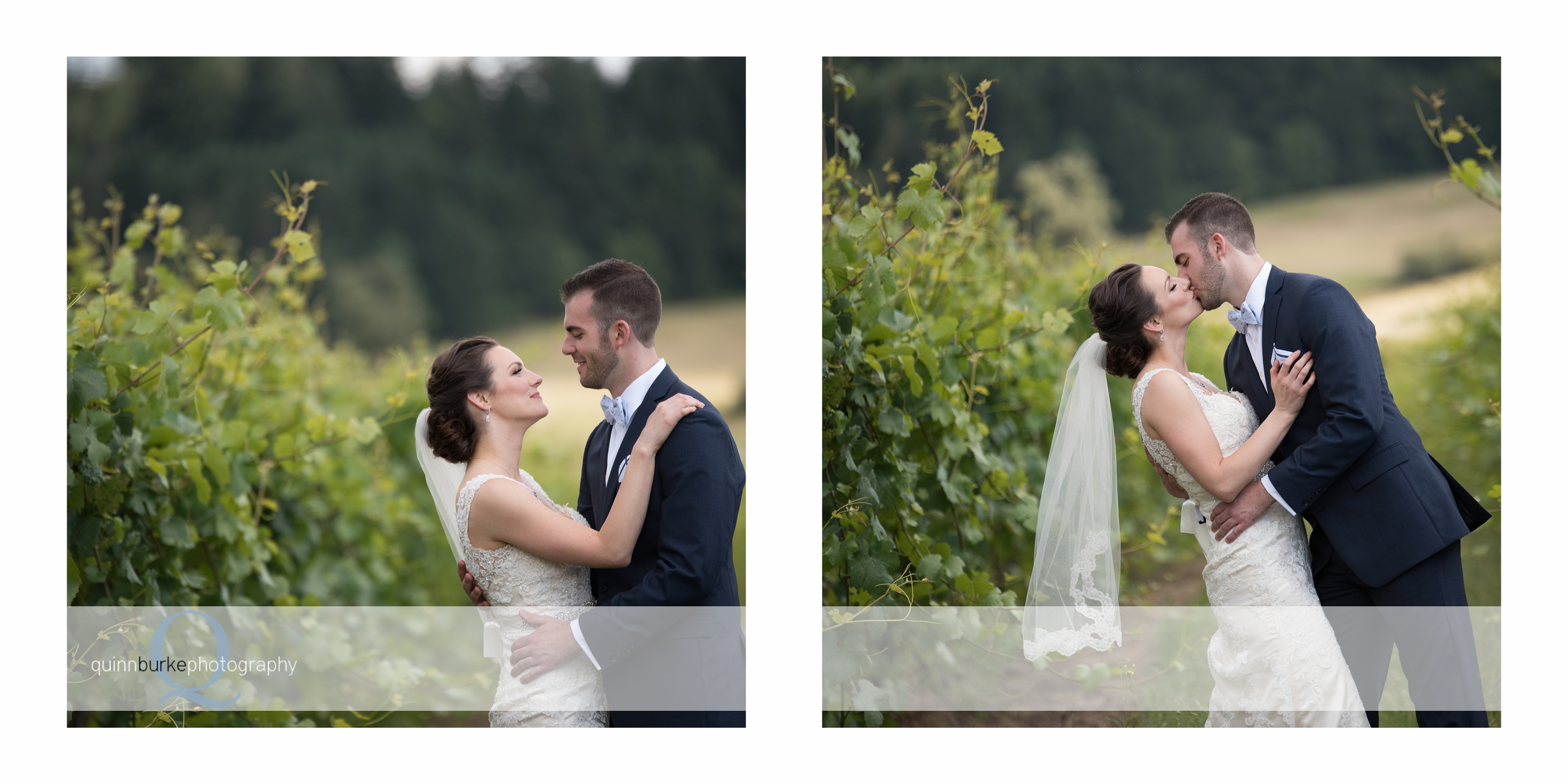 bride and groom in zenith vineyard
