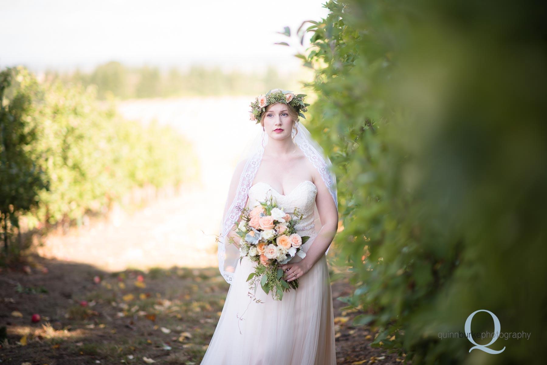bride in apple orchard oregon wedding Perryhill Farm