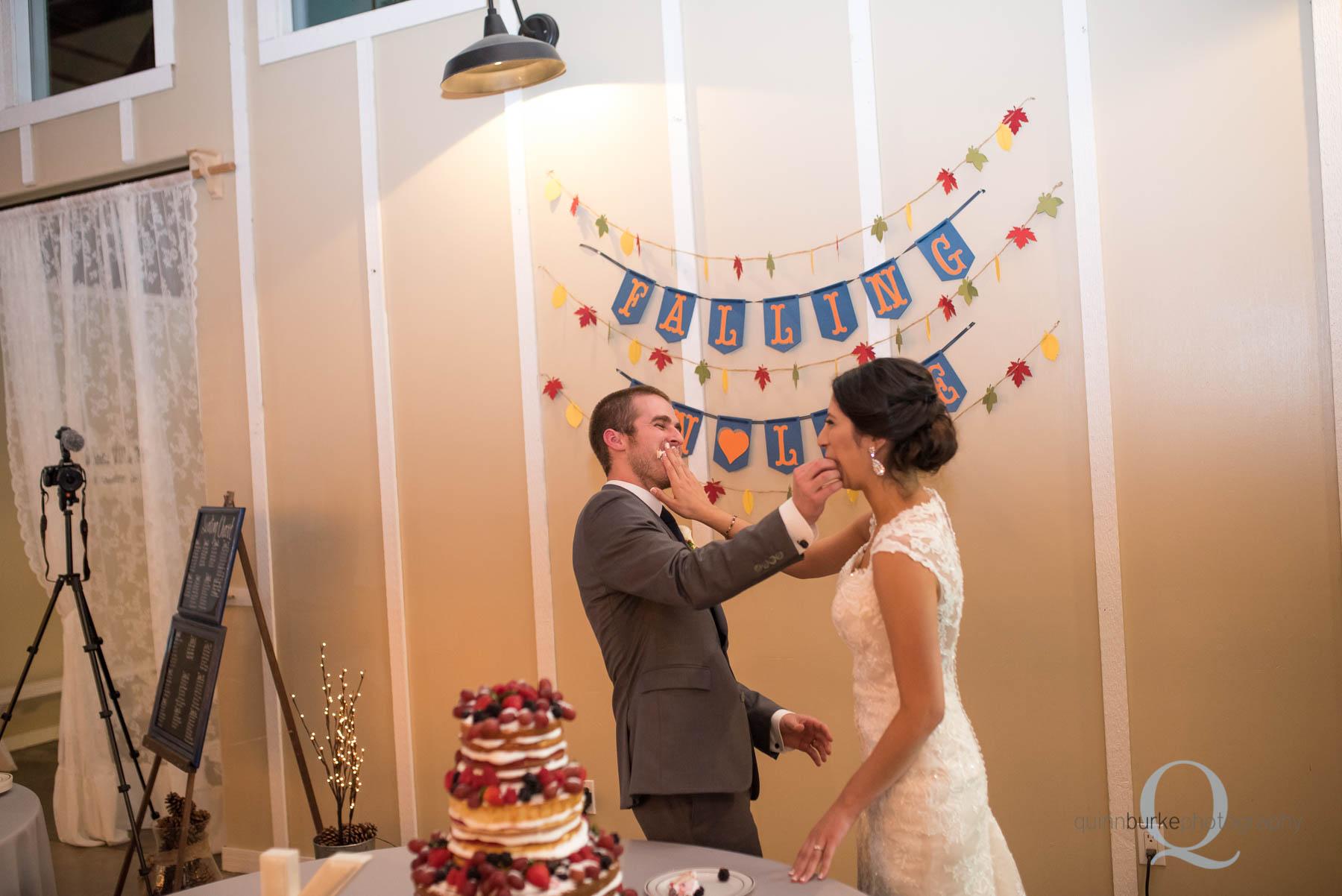 cake cutting during wedding reception Green Villa Barn